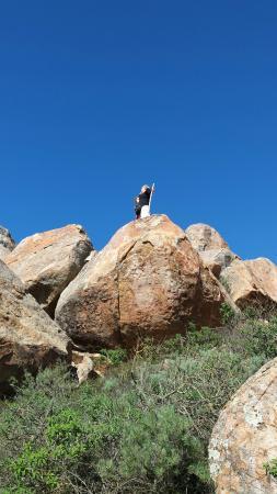 Bishop Peak照片