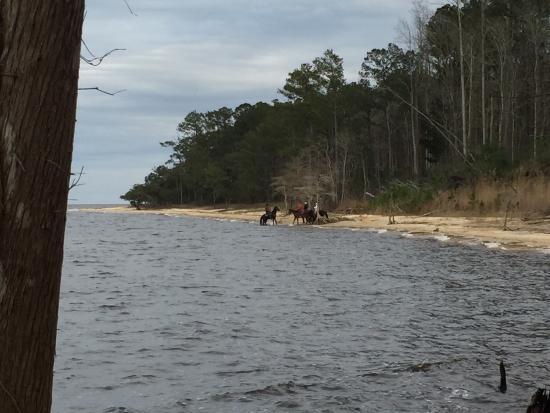 Havelock, Carolina del Norte: photo1.jpg
