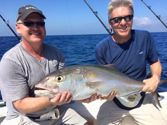 West End, Honduras: Perfect eating size Amberjack