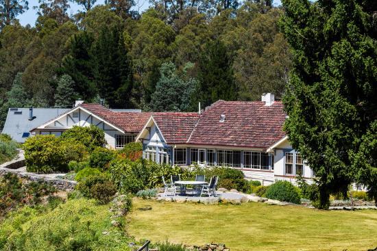 Tarraleah, أستراليا: Lodge garden