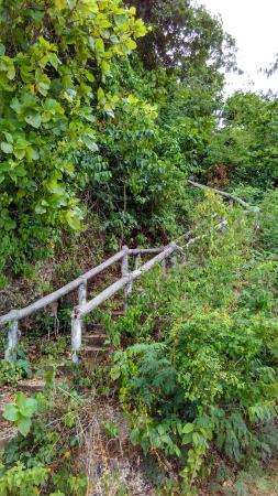 Kagusuan Beach: Stairs