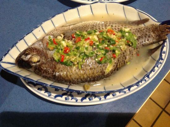 Gutersloh, Alemania: Gedämpfte Fisch