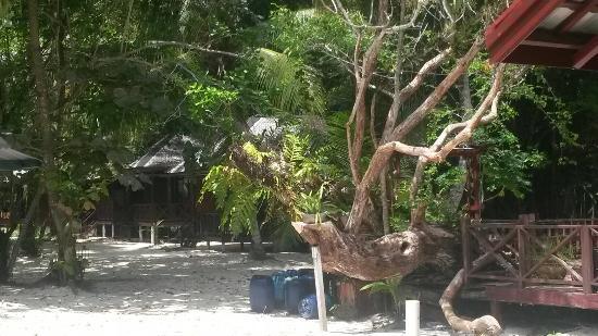 Derawan Islands, Indonezja: Sangalaki beach