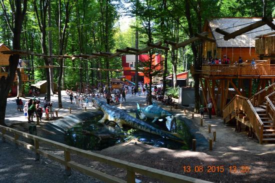 Rasnov, رومانيا: .DYNOS&ADVENTURE PARK
