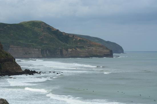 Muriwai Beach, Nueva Zelanda: photo5.jpg