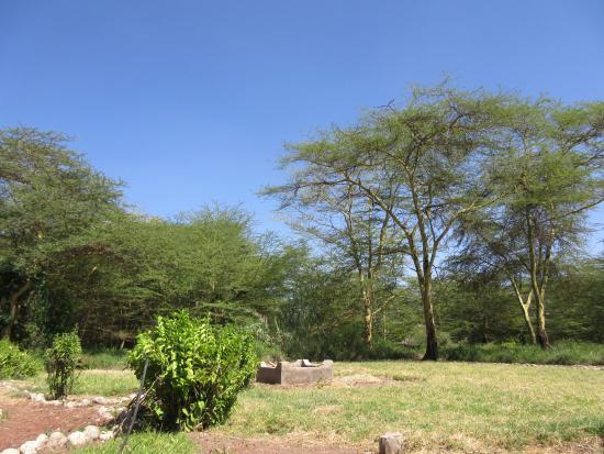 Imagen de Lake Manyara National Park