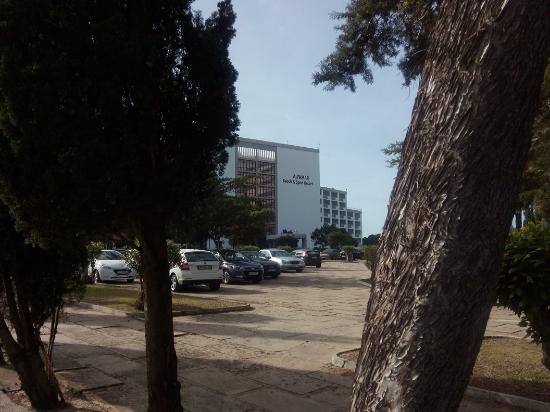 Algarve Gardens: IMG_20160207_110932_large.jpg