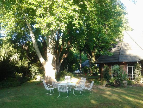 The Swallow's Nest Bed & Breakfast : Garden