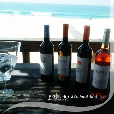 Grândola, Portugal: Brejinho da Costa Winery Atlantic Wines