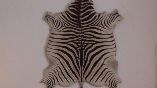 Vila Vicosa, Portogallo: Peau Zebre