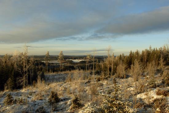 Kangasniemi, Finlandia: Вид, открывающийся с горы