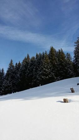 Mieders, Oostenrijk: Serlesbahnen