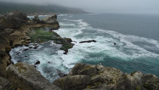 Plettenberg Bay, Republika Południowej Afryki: côtes dentelées