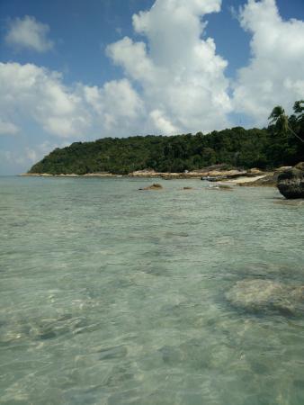 Terengganu, Malaisie : fish point