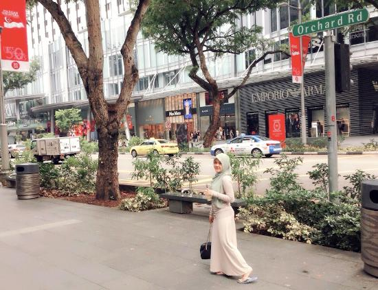 Orchard Road, Singapore: Orchard Rd