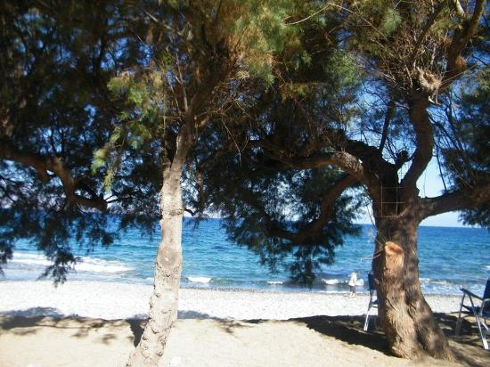 Ravdoucha, Grecja: la vista dal piccolo parcheggio con le tamerici