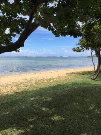 Tamarin: Petit coin de paradis juste pour nous