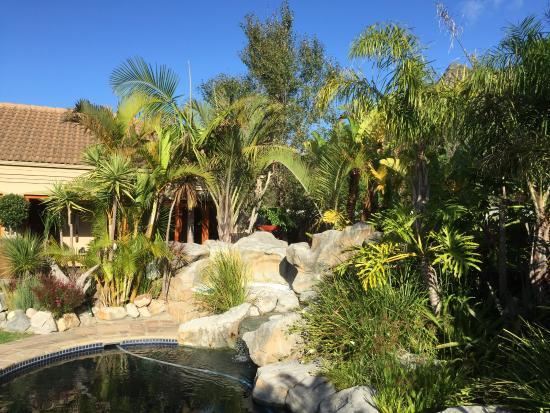 VillaChad Guesthouse: Uitzicht op de prachtige tuin bij het zwembad