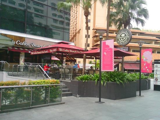 The Coffee Bean And Tea Leaf Singapore 2 Orchard Turn Ion Orch Central Area City Area Menu Prices Tripadvisor