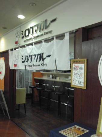 Shirokuma Curry Gotandatoc