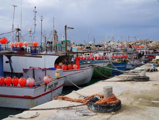 Marsaxlokk, مالطا: Marsaxlokk Bay.