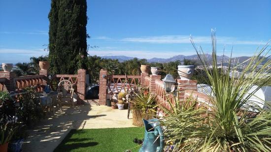 Cortijo Nuevo: Roof garden