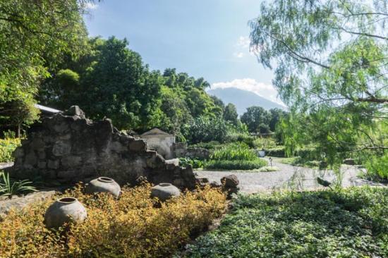 Quinta de las Flores: From my verandah