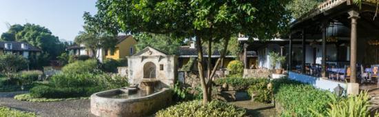 Quinta de las Flores: Garden panorama with dining area