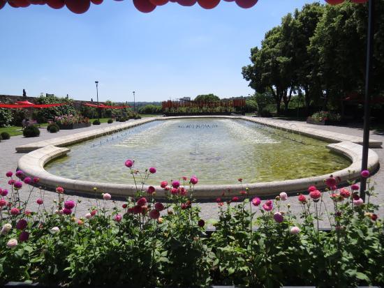 jardins de l 39 v ch de limoges picture of jardins de l