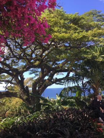 Grey's Island Excursions: photo2.jpg