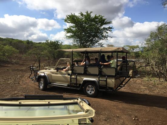 Mkuze, Sudáfrica: Rush hour on a game reserve