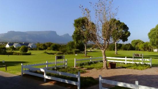 Steenberg Golf Club: DSC_0088_large.jpg