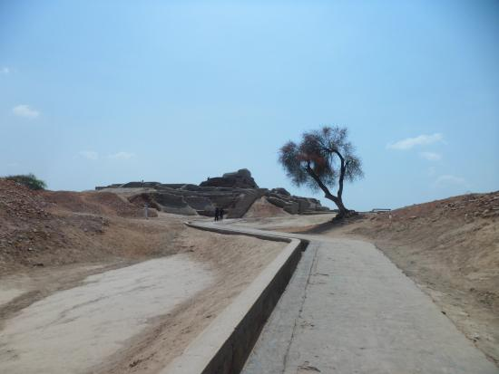 Ranipur, Pakistán: 遺跡内ストゥーパへの道