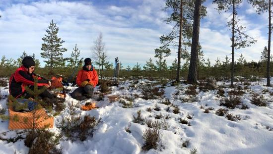 Falun, السويد: Enjoying a cup of coffee in a snowy Falun.