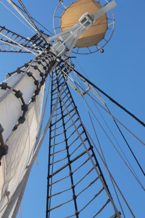 Fremantle, Australia: STS Leeuwin II, mast and rigging.