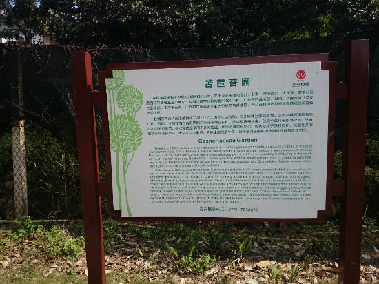 Наньнин, Китай: DSC_0034_large.jpg