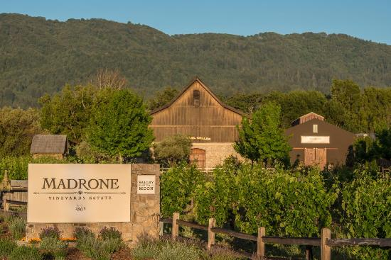 Gorgeous new tasting room in Glen Ellen