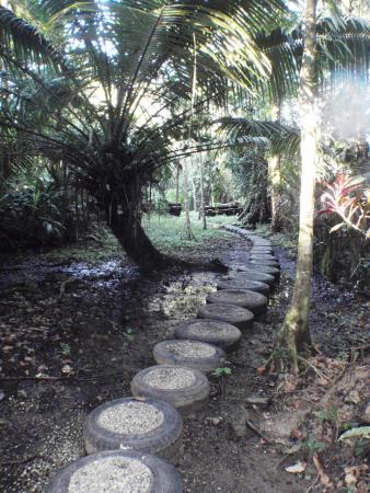 Manzanillo, Costa Rica : Path to beach on grounds