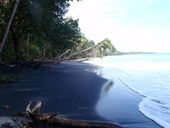 Manzanillo, Costa Rica : Beach area in front of Congo Bongo