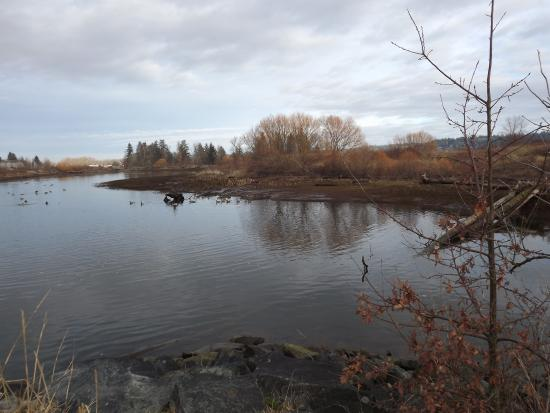Courtenay, Kanada: Fully restored Lagoon in the Airpark