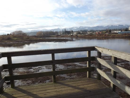 Courtenay, Canada: View of the Vancouver Island Mountains from the Airpark