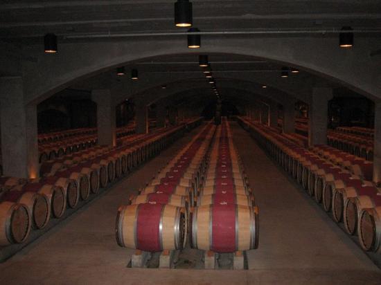 Oakville, Califórnia: El sueño de todo tomador de vino