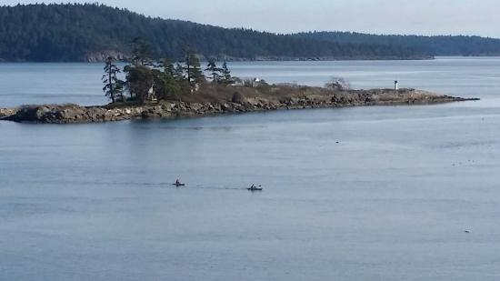 Pender Island, Canadá: Kayaking in February just off Morning Moon come and enjoy the beautiful west coast of BC