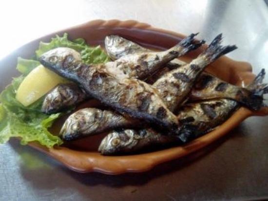 Lozenets, Bułgaria: fish fresh