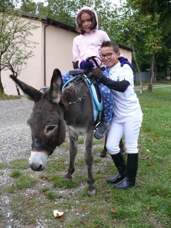 Pavullo Nel Frignano, Italia: Stella la somarella dell'agriturismo campiano