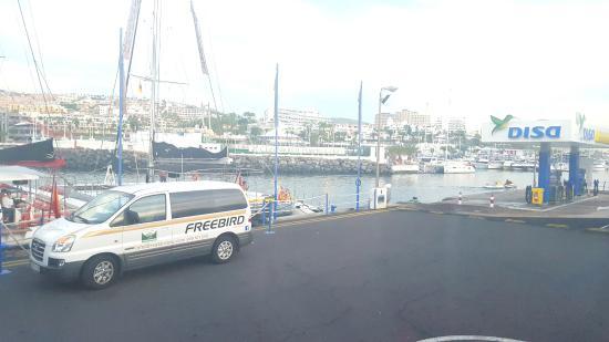 Freebird Catamarans照片