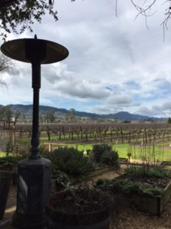 Our lunch location outside Hopper Creek Winery