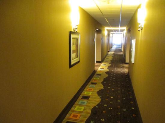 Columbia, MO : Interior Corridor