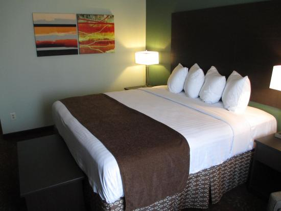 Columbia, MO : King Guest Room