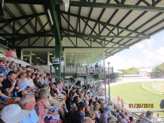 Barbados Turf Club: Grandstands for viewing races